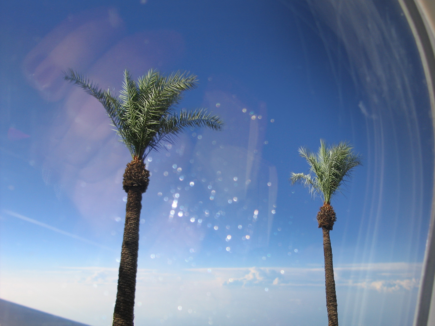 If You Have Only One Week in L.A. | Splash images composite by Sarah Malone